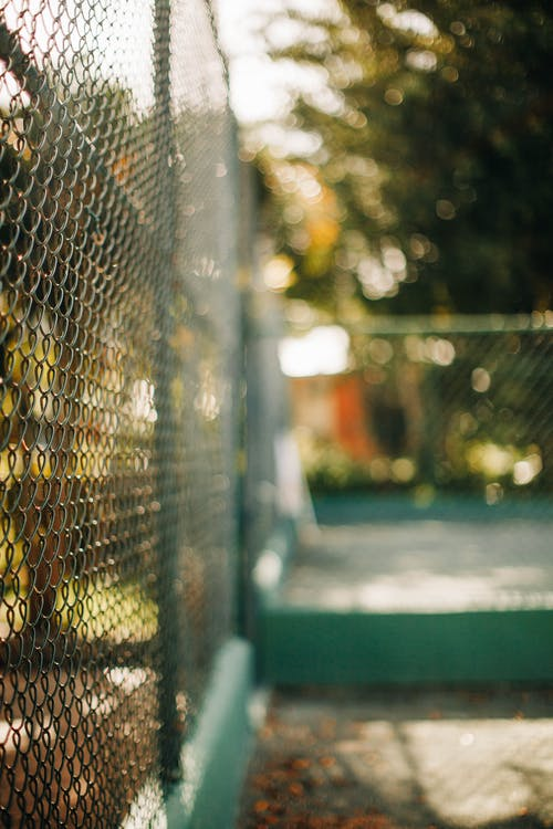Selective Focus Photo of Chain-Link Fence