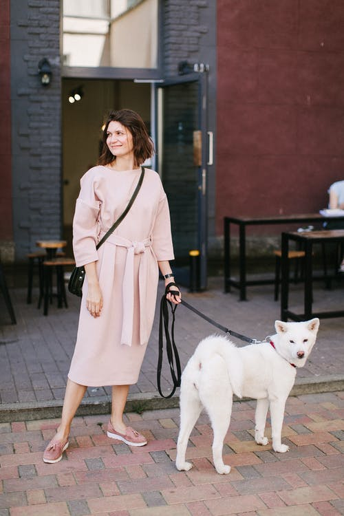 Photo of Woman Wearing Beige Dress Standing With A Dog