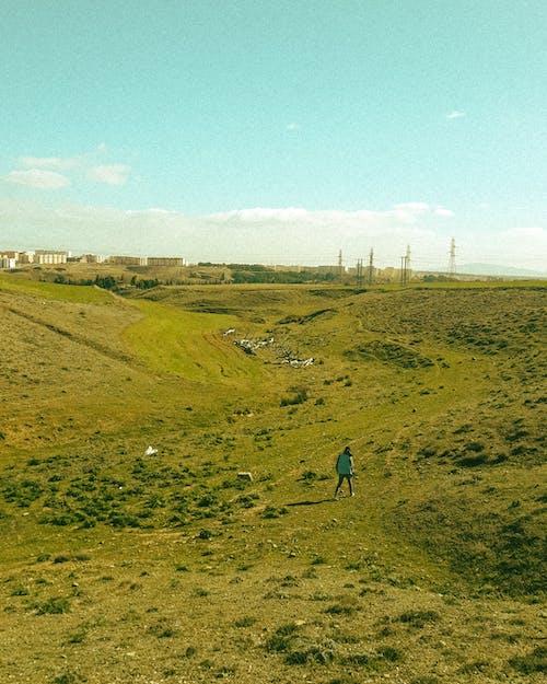 Person Walking on Green Grass Field