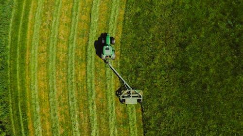 Бесплатное стоковое фото с Аэрофотосъемка, вид сверху, выращивать