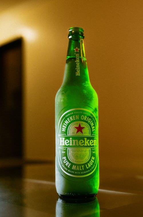 Imagine de stoc gratuită din bar, băutură, berărie, bere