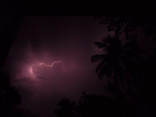 Fotos de stock gratuitas de belleza natural, colores naturales, iluminación natural, noche oscura