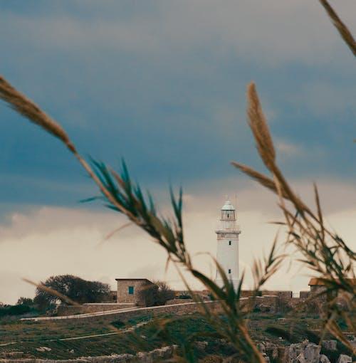 キプロス, ビーチ, ビーチの夕日, ファームの無料の写真素材
