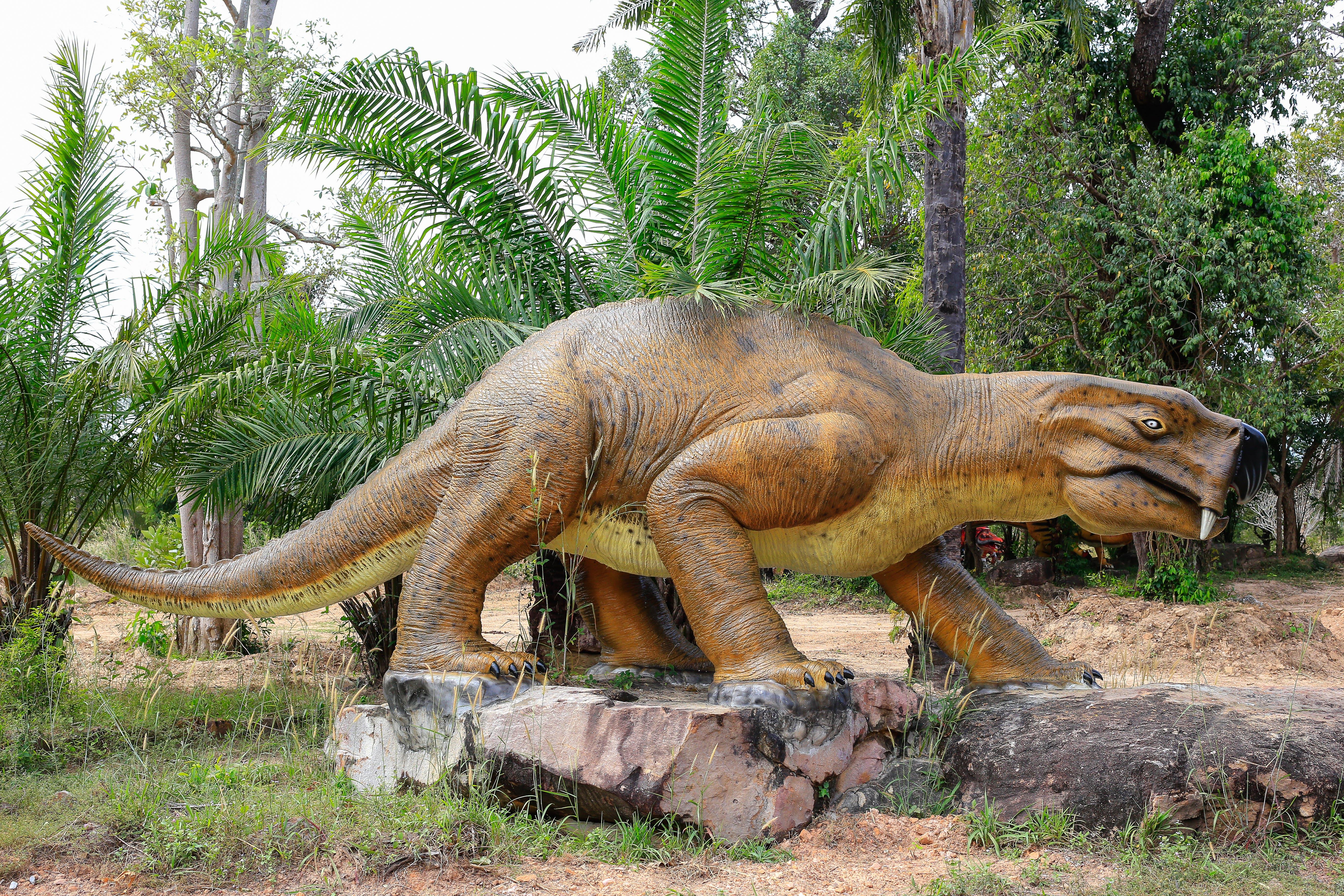Безкоштовне стокове фото на тему «модель динозаврів, сад динозаврів»