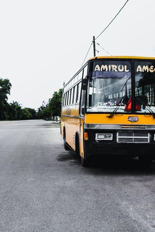 Free stock photo of bus, road, school bus