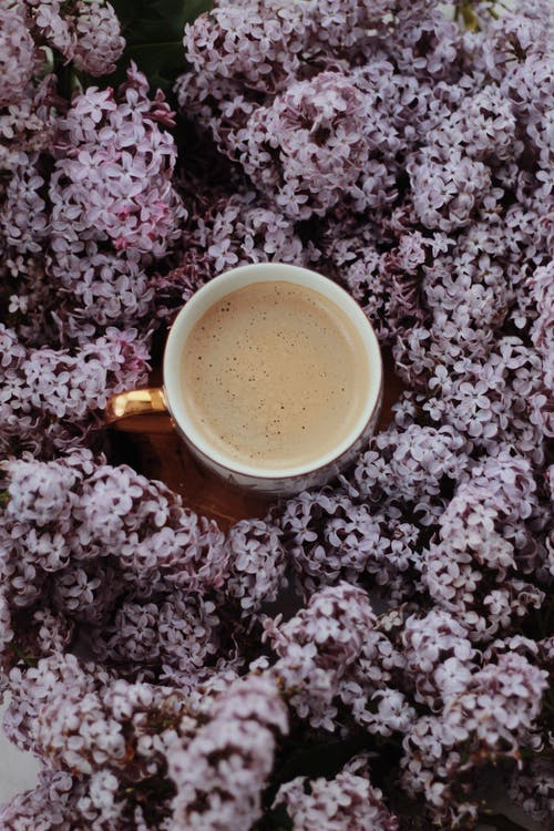 From above composition of ceramic cup of freshly brewed coffee with milk surrounded with abundant lilac flowers