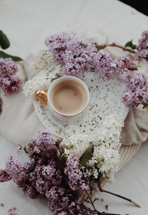 Elegant cup of coffee on saucer decorated with lilac branches