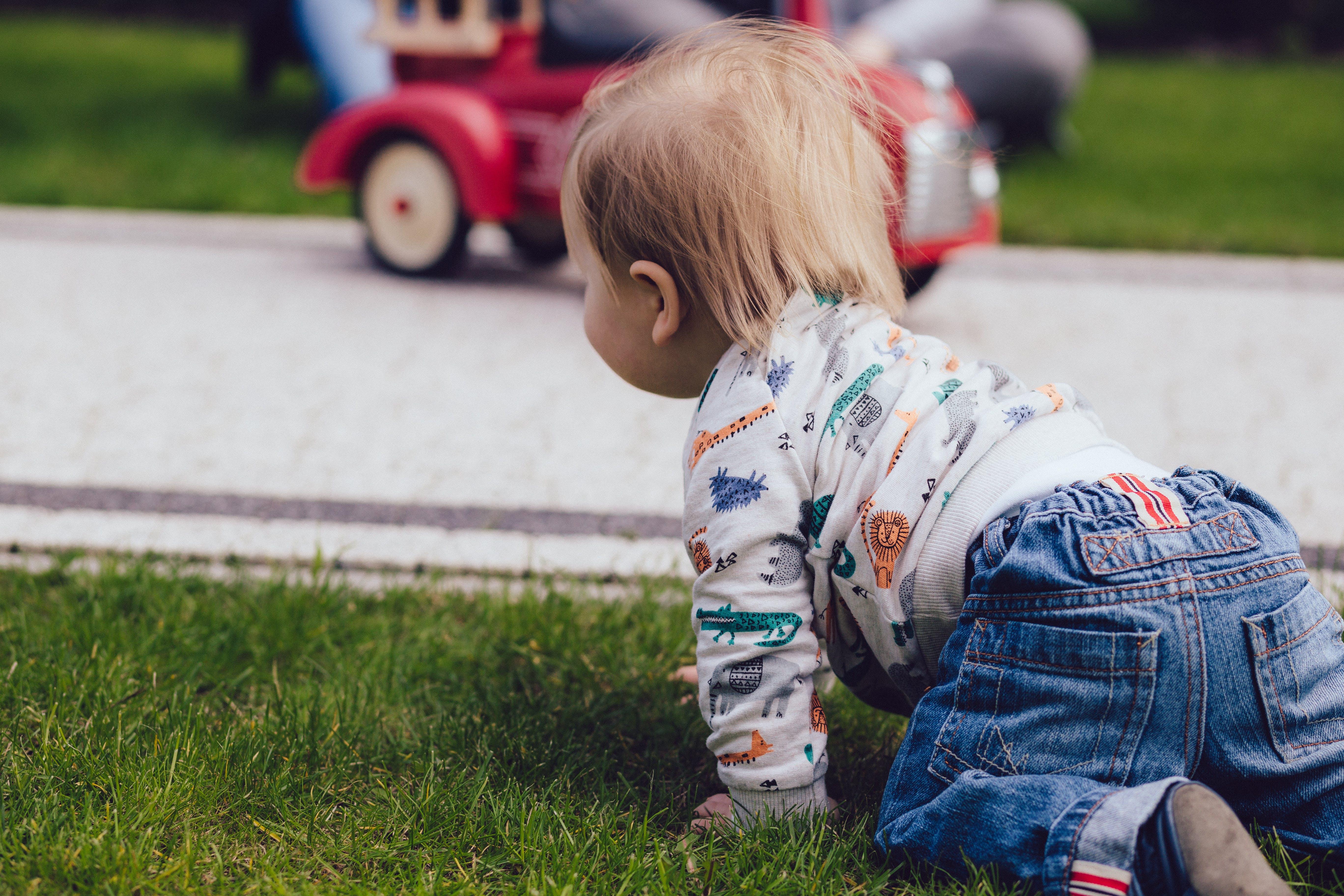 Boy Crawling on Green Grass Field