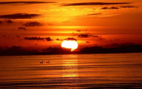 Foto d'estoc gratuïta de alba, capvespre, cel, cel ennuvolat