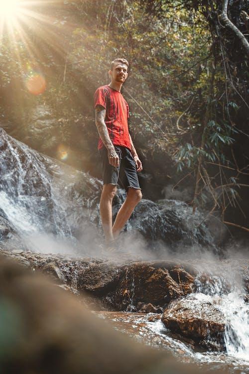 Free stock photo of explorer, forest, german man