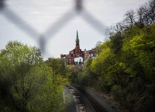 Free stock photo of church, dof