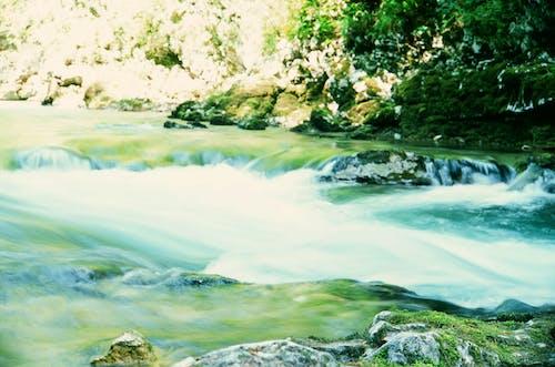 Free stock photo of slovenia, stream, water