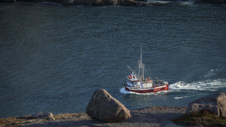 Foto profissional grátis de água, baía, barco, barco de pesca