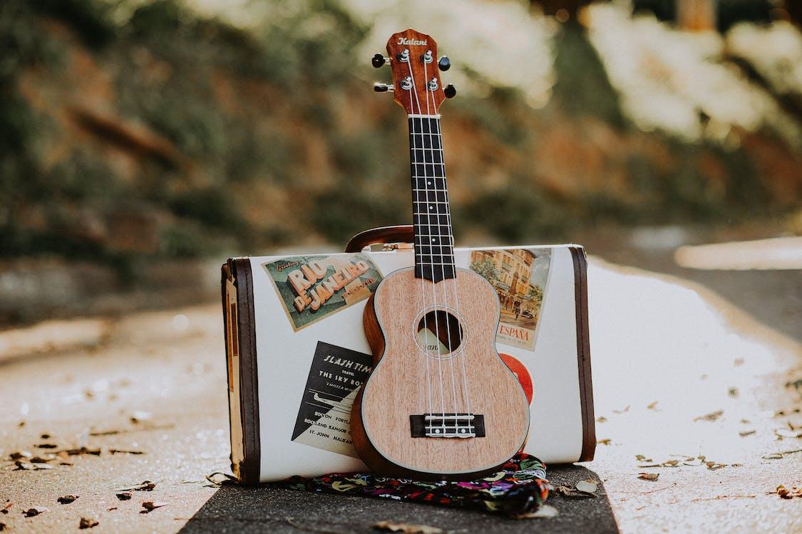 Wooden soprano ukulele placed on asphalt road with stylish suitcase on sunny autumn day