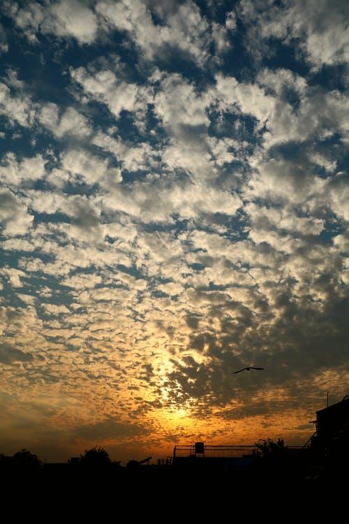 Free stock photo of beautiful sky, Beautiful sunset, clouds, colour