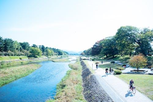 Free stock photo of 晴れ, 自然, 自転車