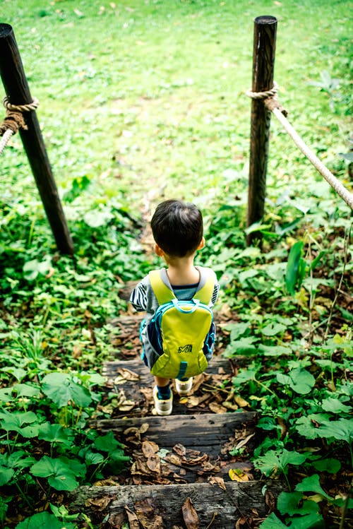 Boy in Yellow and Blue Shirt Walking on Brown Wooden Pathway