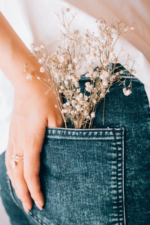 Fotos de stock gratuitas de anónimo, belleza, blanco, botánica