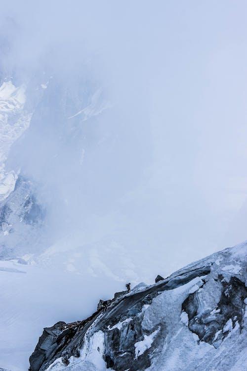 감기, 거친, 겨울, 경치가 좋은의 무료 스톡 사진