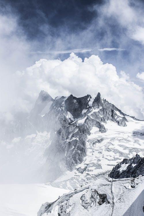 감기, 거친, 겨울, 경치의 무료 스톡 사진