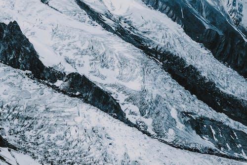 감기, 거대한, 거친, 겨울의 무료 스톡 사진