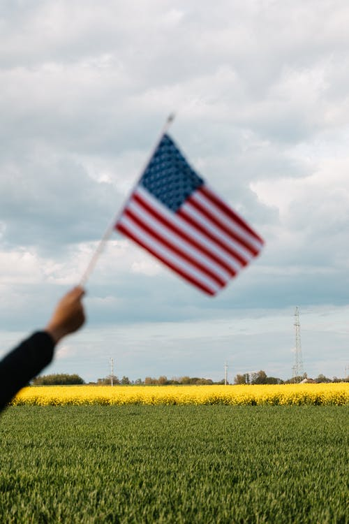 Crop unrecognizable patriot raising flag of USA on bright field