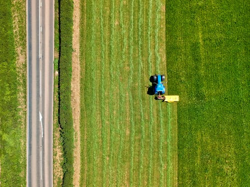 2 People Sitting on Green Grass Field