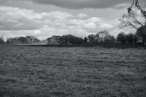 Fotobanka sbezplatnými fotkami na tému ciel, ferme, mraky, noir et blanc