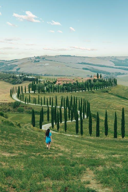 緑の丘陵地帯でジョギングアクティブな女性