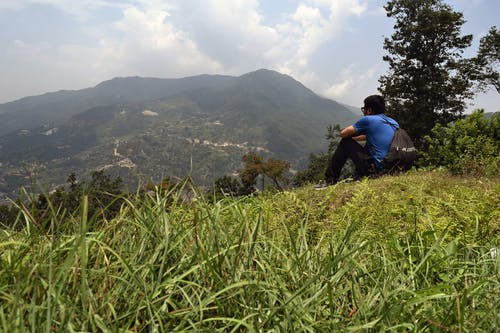 Immagine gratuita di erba, natura, nepal, nostalgico
