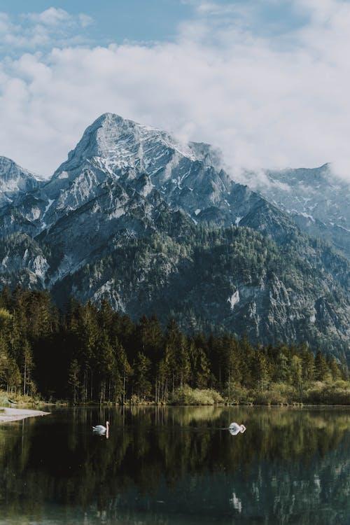 Gratis lagerfoto af barbarisk, bjerg, dagslys, forkølelse