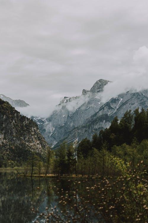 Gratis lagerfoto af bjerg, dis, forkølelse, is