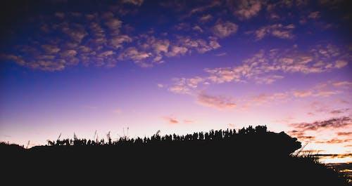 Foto stok gratis abstrak, alam, awan