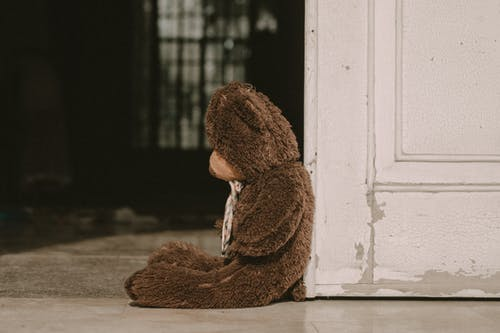 Brown Teddy Bear Leaning on White Wooden Wall