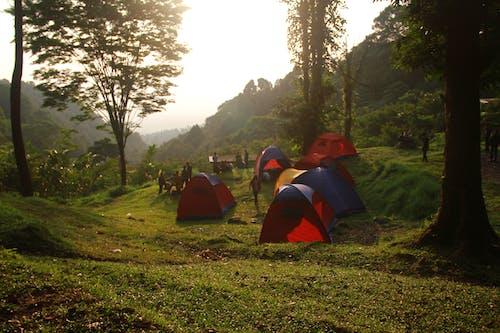 Photos gratuites de camper, camping, montagne, tente