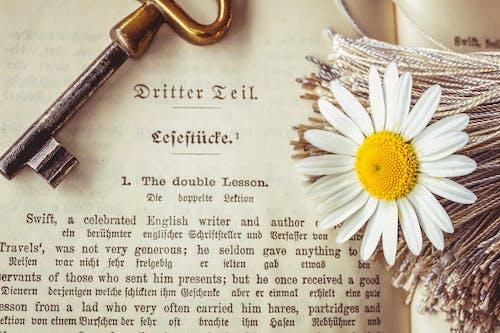 Gratis stockfoto met bloem, boek, klassiek, leesboek
