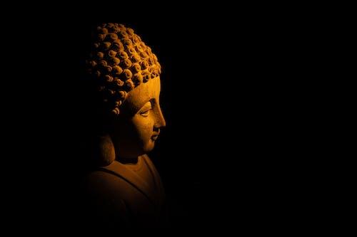 คลังภาพถ่ายฟรี ของ budhas, กลางคืน, การทำสมาธิ, คน