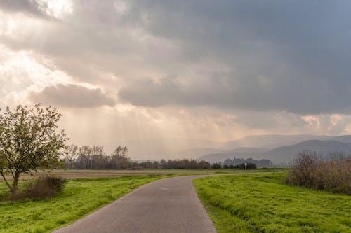Darmowe zdjęcie z galerii z boiska, chmury, droga, drzewo