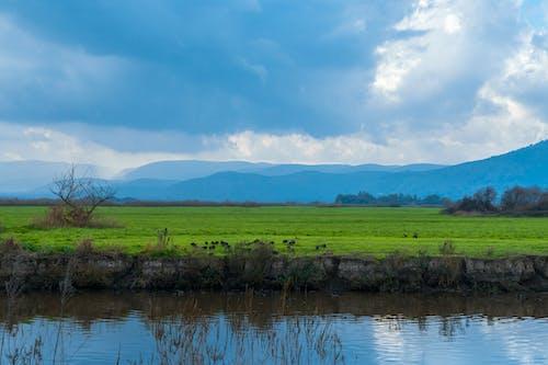 Darmowe zdjęcie z galerii z bluehour, boiska, chmury, góry