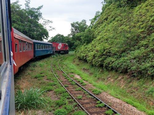 Red Train on Rail Tracks Near Green Trees