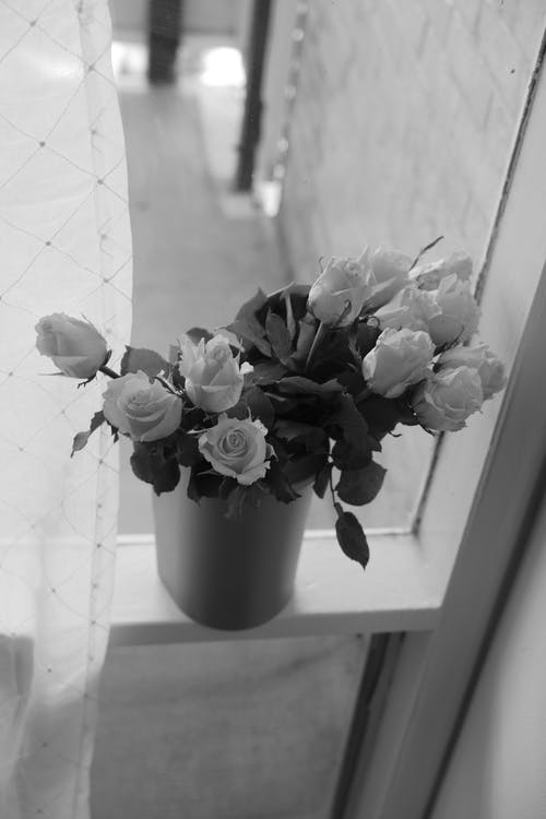 Free stock photo of bedroom, blackandwhite, flowers