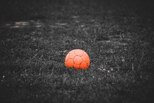 Základová fotografie zdarma na téma bw fotografie, fotbal, fotbalové hřiště, fotografie přírody