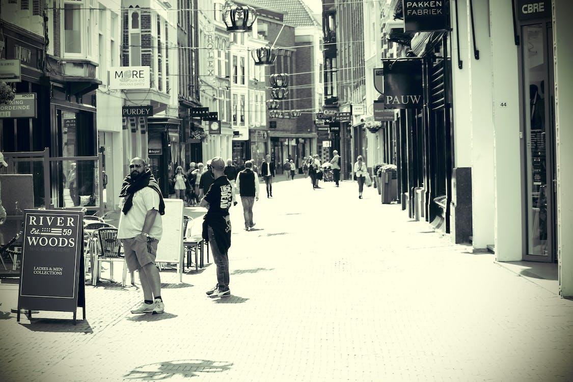 Free stock photo of city, dutch, holland