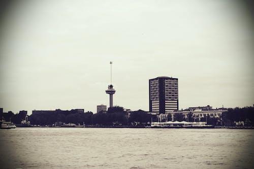 도시, 도시 풍경, 로테르담, 물의 무료 스톡 사진