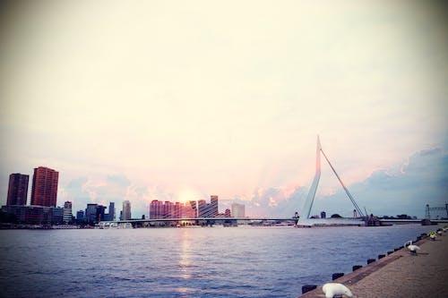 binalar, deniz kenarı, gökdelenler, gökyüzü içeren Ücretsiz stok fotoğraf
