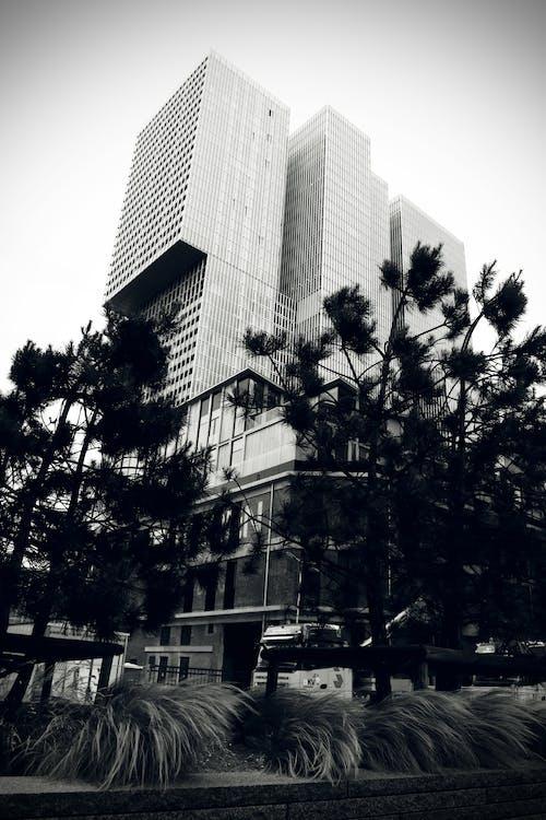ağaçlar, bina, gökyüzü, gün ışığı içeren Ücretsiz stok fotoğraf