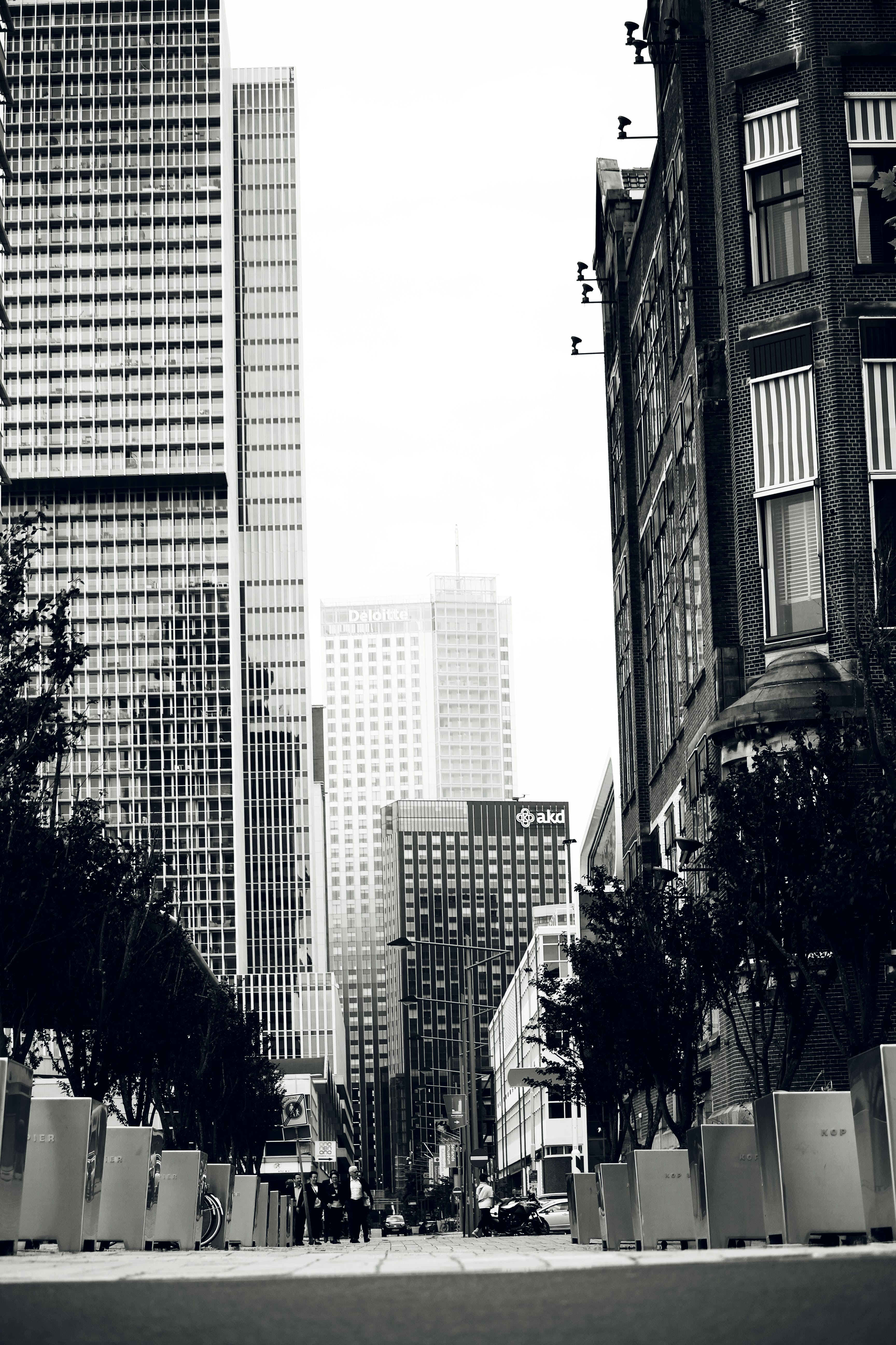 Grayscale of High-rise Buildings