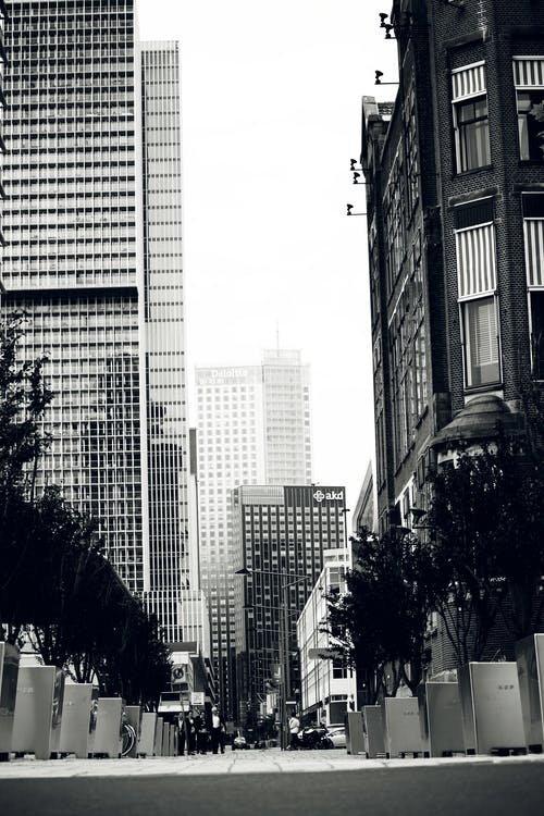 Immagine gratuita di alberi, appartamento, architettura, business