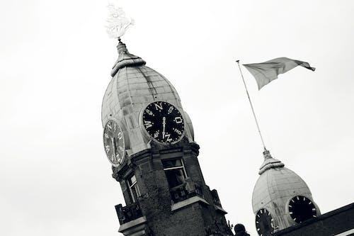 건축, 도시, 도시 시계, 로테르담의 무료 스톡 사진