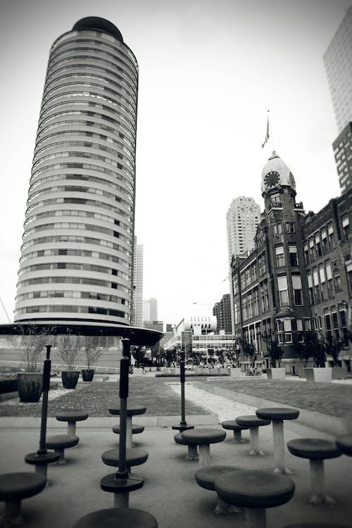 건축, 도시, 로테르담, 탑의 무료 스톡 사진